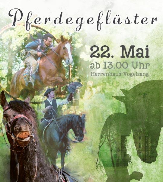 Pferdetag im Herrenhaus-Vogelsang